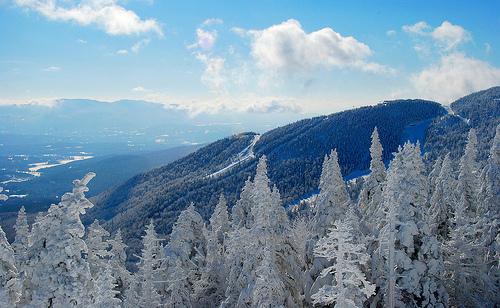 stowe, ski getaway, mountain with snowed evergreens