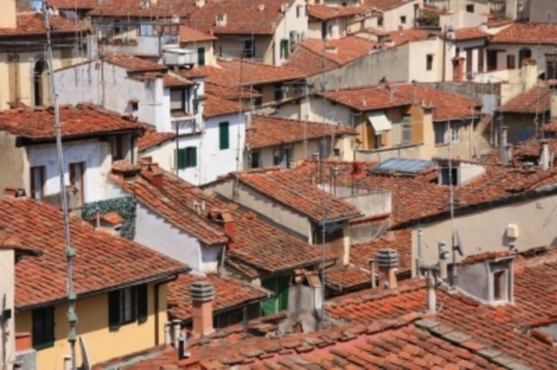 Roof Tops Of Houses