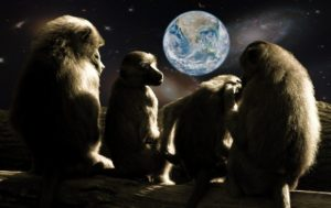planet of the apes, apes,monkeys,planet, world, earth, animals