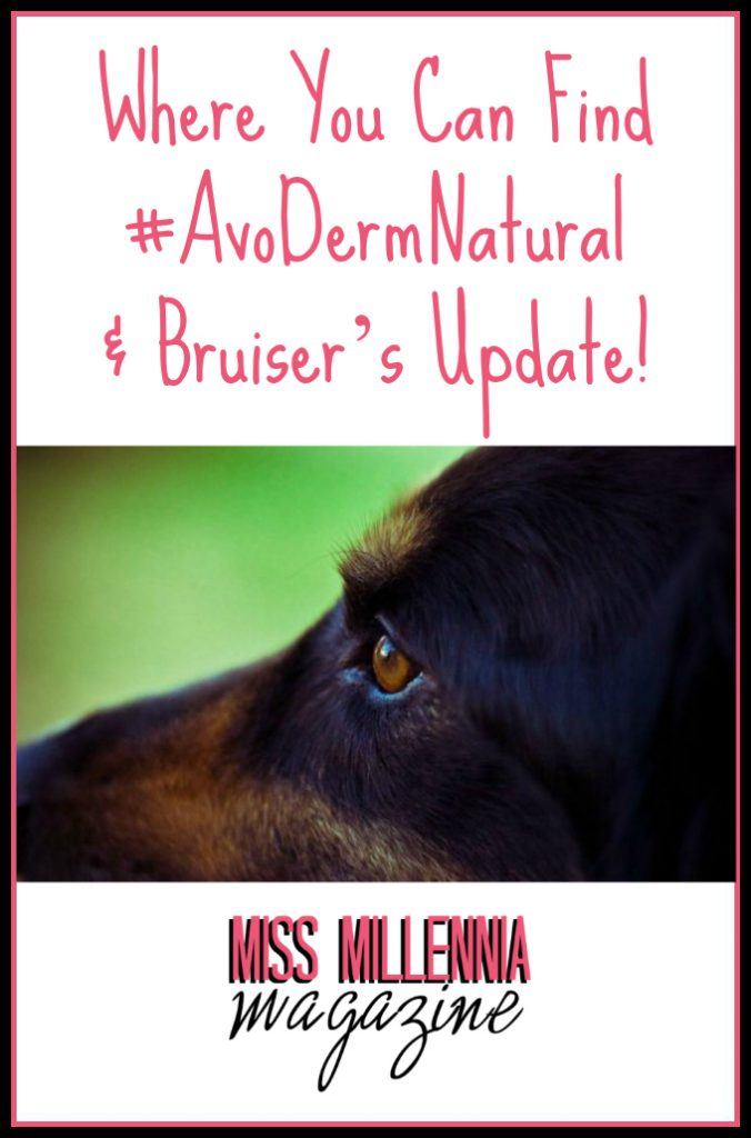 Where You Can Find #AvoDermNatural & Bruiser's Update!