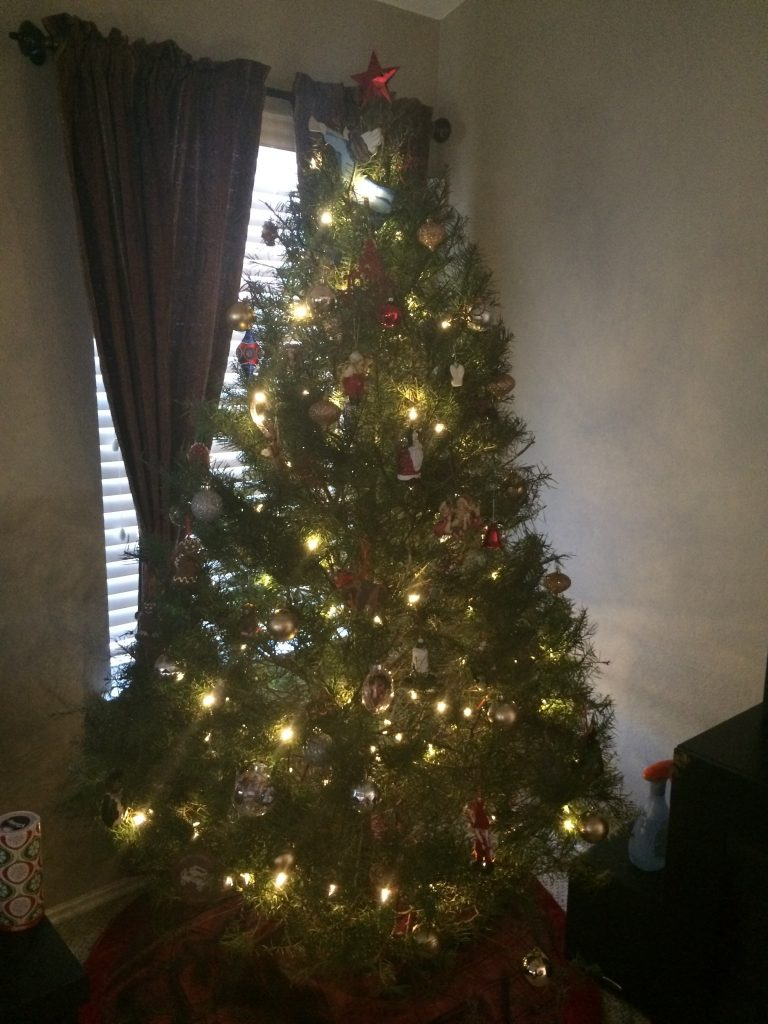 Our first Christmas tree, just in time before our holiday guests arrive