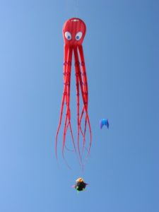 know about kites and octopus shape