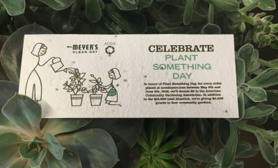 mrs. meyer's plant something day