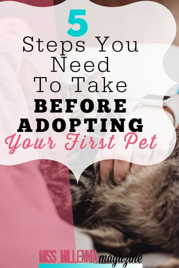 Thinking about getting a furry friend? There's so much to do to prepare! Here are 5 steps you need to take before adopting your first pet.