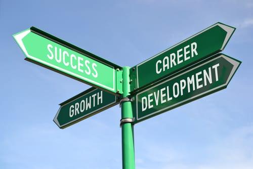 professional path