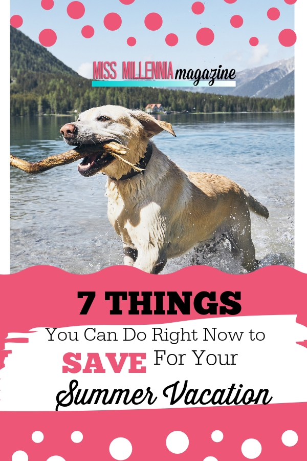 7 Things to save Summer Vacation