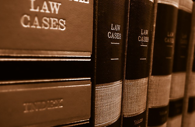 law cases,How A Misdemeanor Can Destroy Your Future And Career