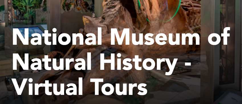 National Museum of Natural History - Virtual Tours