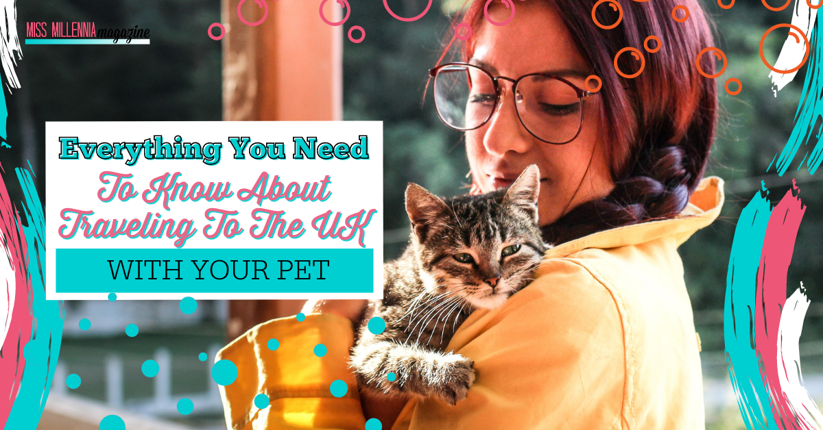Everything You Need To Know About Traveling To The UK With Your Pet