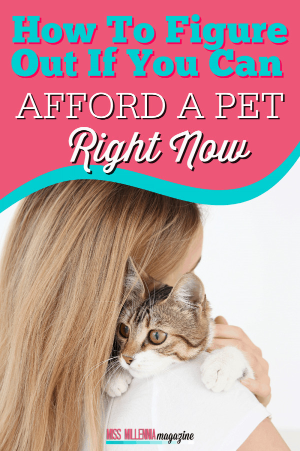 How To Figure Out If You Can Afford A Pet Right Now